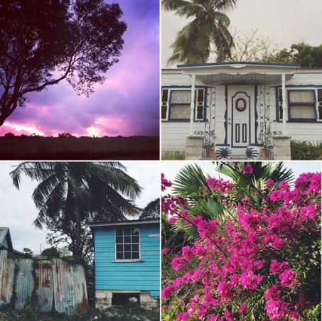 Barbados colors