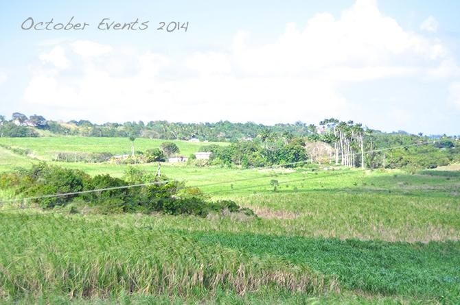 Barbados October Events 2014
