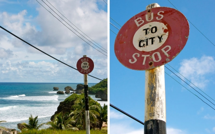 Barbados 101: Tips To Know Before Driving in Barbados