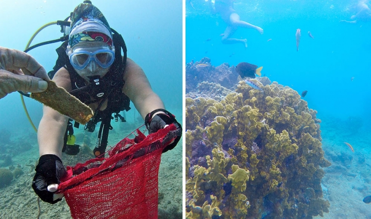 Underwater Clean Up in Barbados