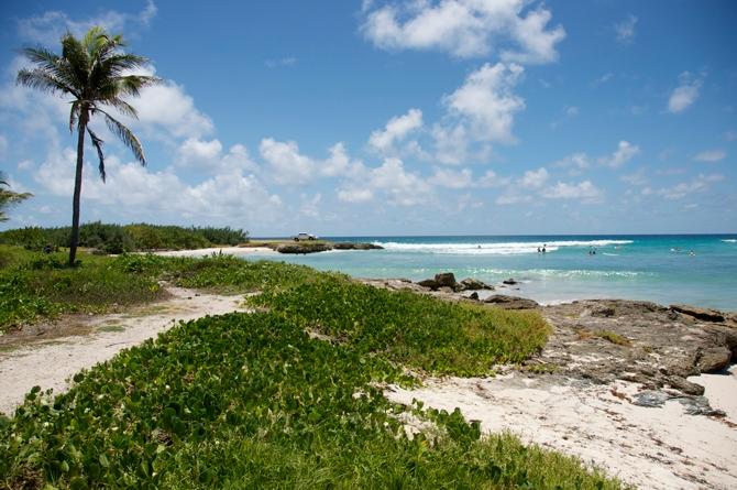 Inch Marlow Beach Barbados