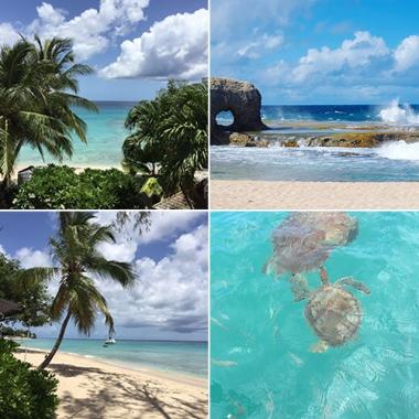 Crystal clear waters  Barbados