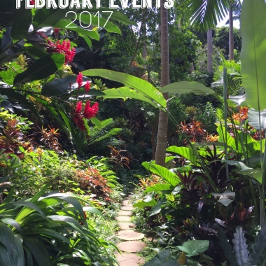 February Events in Barbados