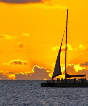 Jammin' Catamaran Cruise