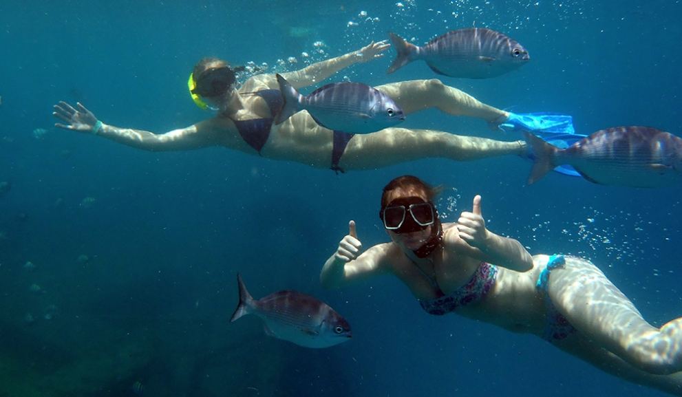 Swimming and Snorkeling with the fish and turtles in Barbados