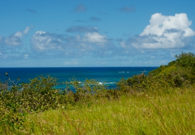 View from Harrison Point Lighthouse on the North coast of Barbados