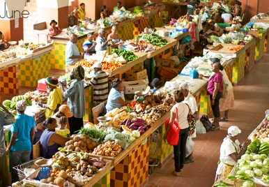 Hello June - Cheapside market Barbados