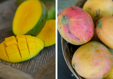 In Season: Mangos in Barbados