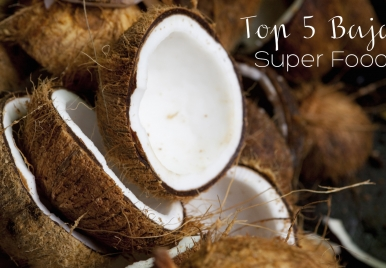 Bajan Super Foods | The Coconut
